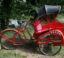 rickshaw 004.jpg